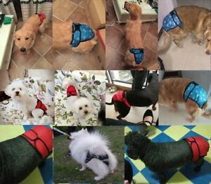 Dog Cat Male Female Nappy Diapers Shorts Season Sanitary Pants Undies Underpants