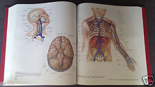 HUMAN ANATOMY Hardcover 2ND Edition Martini Hard to Find Book in NEW Condition
