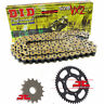 Yamaha XV250 S Virago 1995-08 DID GOLD VX2 X-Ring Chain & Sprocket Kit