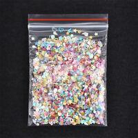 5000pcs Nail Art DIY Glitter Heart Flower Star Sequins Stickers Decals Supply