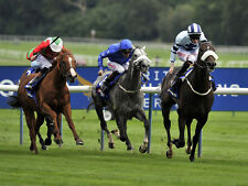 Horse Racing Staking Plans for Profit Betting Systems
