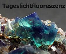 5769 Fluorite fluorine Fluorit Zwilling daylightflourescence  UV  Rogerley  GB