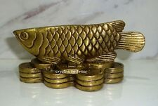 Feng Shui - 2016 Wealth Inviting Arowana on Bed of Coins (Brass)