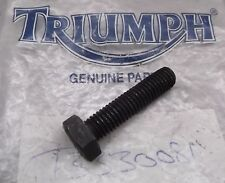 Genuine Triumph Tiger Trident Trophy Exhaust Silencer Clamp Screw Bolt T3330081