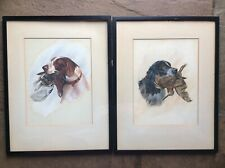 Antique Pair Watercolour Painting Shooting Working Dog Spaniels D Palmer 1912