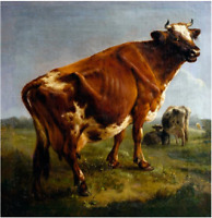 "high quality oil painting 100% handpainted on canvas ""A cow"""