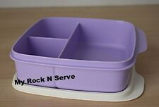 Tupperware Lunch Square Divided Packette Lunch Box Lavander Color  New