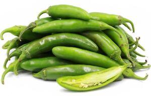 Pepper 520 Serrano Hidalgo Seeds - UK Seller