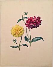Listed Artist Maria Margaretha Van Os (1779-1862) Signed Watercolor Dahlias
