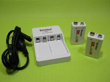 Two 9.6V Rechargeable LiFePO4 Batteries 320mAh lightweight with 2-slot charger