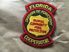Division of Forestry Florida Fire Patch