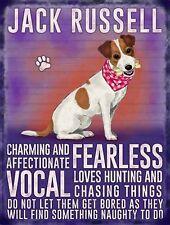 Jack Russell Dog  ..., Colourful Metal Dangler Mini Hanging Sign,