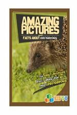 Amazing Pictures and Facts: Amazing Pictures and Facts about Hedgehogs : The...