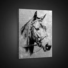 CANVAS WANDBILD LEINWANDBILD POSTER BILD Foto Grau Tier Tieren Pferd 3FX10146O4