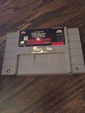 Beware The Ultimate Evil Of Warlock Super Nintendo SNES Cart SN1