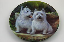 Royal Worcester Plate West Highland White Terrier by John Silver SIGNED Plate N4