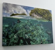 Riff Meer Fische Insel Leinwand Bild Wandbild Kunstdruck L0143