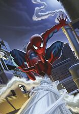 Childrens bedroom Carta Da Parati Murale SPIDER-MAN da tetto-Marvel Photo MURO PER RAGAZZI