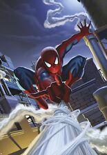 Chambre à coucher pour enfants Papier peint mural Spider-man toit Marvel