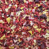 NATURAL ROSE PETAL CONFETTI - BIODEGRADABLE - MIXED COLOURS