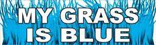 """"""" My Grass Is Blue """"    Bluegrass Music   Bumper Sticker decal Nashville Opry"""