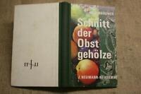 Fachbuch Schnitt der Obstgehölze, Gehölzschnitt, Veredelung, Beerenobst, 1979