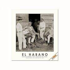 Habanos / El Habano Cigar Poster Tobacco Barn,1904. Pinar del Rio. Cuba. B&W