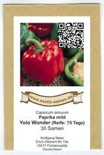 Yolo Wonder - Paprikia süß - festfleischig - 30 Samen
