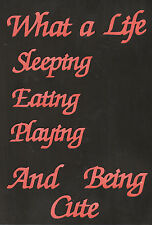 Scrapbooking words-What a life .....