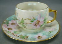 Thomas Bavaria Hand Painted Yolanda Colella Wild Pink Roses Tea Cup & Saucer