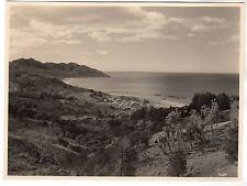 Waipiro Bay & Village - New Zealand Photograph c1930s