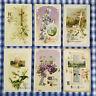 6 vintage ANTIQUE EASTER POSTCARD Floral CROSS CHURCH Religious all JOHN WINSCH