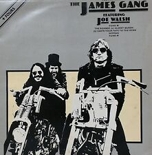 """THE JAMES GANG~JOE WALSH~FOUR TRACKS FROM~ABE 12010~1st PRESS~12"""" VINYL EP~EX-"""