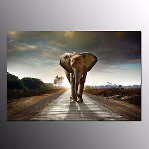 FRAMED Animal Canvas Prints For Room Decor Big Elephant Wall Art Canvas Painting