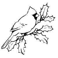 CARDINAL on Holly Branch UNMOUNTED Christmas rubber stamp, winter, bird #7