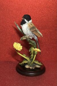 COUNTRY ARTISTS BIRDS - REED BUNTING WITH DANDELIONS 03236