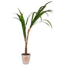 Artificiale Yucca-Palme Albero Decorativo Pianta da Camera Finto 100 CM