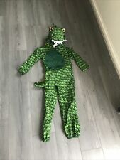Dragon Outfit Age 7-8