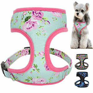 Breathable Mesh Small Medium Pet Dog Harness and Walking Lead set Cute Floral