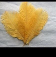 """5 pieces Ostrich Feathers Millinery & Crafts 6-8"""" Golden"""
