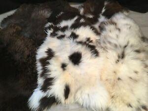 Sheepskin Rug Natural Genuine Pelt Beautiful
