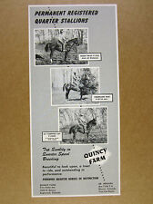 1954 Quarter Horse Stallions photos Quincy Farm Englewood CO vintage print Ad