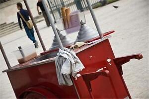 Business Plan: Start Up ITALIAN ICE Vendor Kiosk Cart