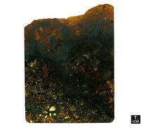 "Pallasite ""JEPARA"" - Slice oxidized crust - 88,52 g - 98 x 132 mm"