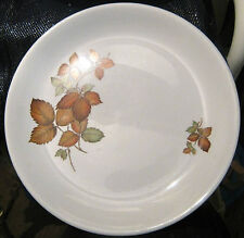 Lovely Alfred Meakin dinner plate autumn style pattern approx 10ins wide
