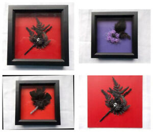 Gothic Black Box Frame Picture.Roses Skulls Feathers.Red Purple Displays Unique