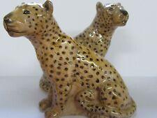 Leopard Salt and Pepper Set - Leopard Cruet - Gift Boxed - New