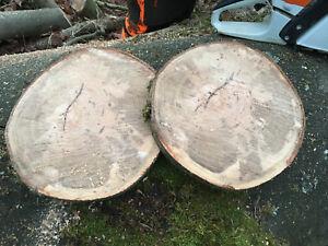 Baumscheibe, Holzscheibe, Tischplatte ca. 30x3 cm, Weißbuche