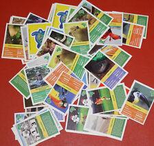 WWF EDEKA Entdecke Brasilien Sticker 92 Stück + 23 Steck Paddy's