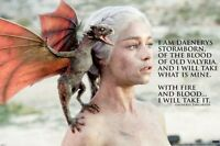 GAME OF THRONES ~ DAENERYS TAKE WHAT IS MINE ~ 24x36 HBO TV POSTER ~ NEW/ROLLED